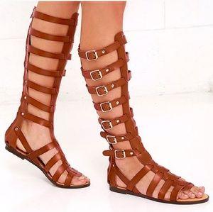 cdd6c313d35 Madden Girl Shoes - NWT knee high tan Steve Madden gladiator sandals